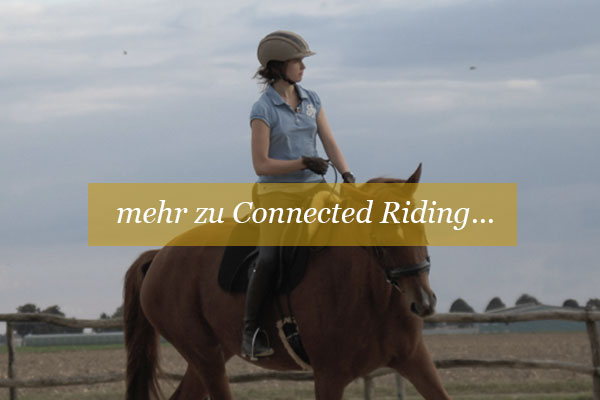 entspanntes-reiten-connected-riding