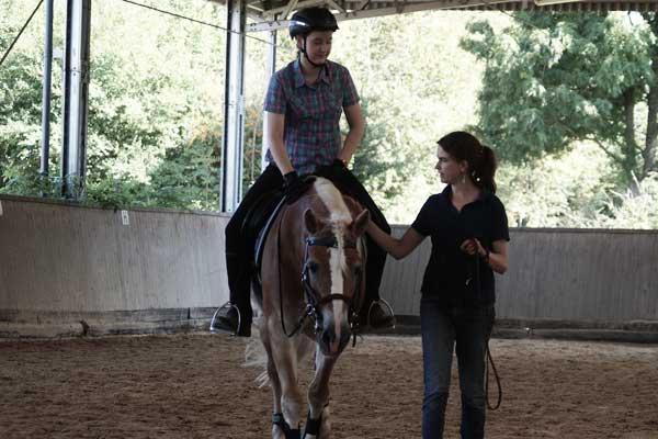 pferd-stolpert-standig