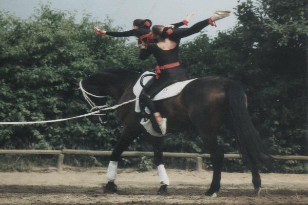 Carlita-Picard-reitlehrerin-frankfurt-bodenarbeit-pferd-2
