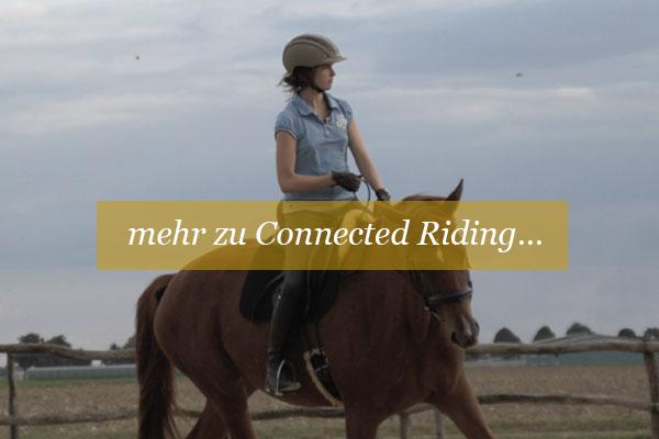 Entspanntes-reiten-gewaltfreies-reiten-connected-riiding