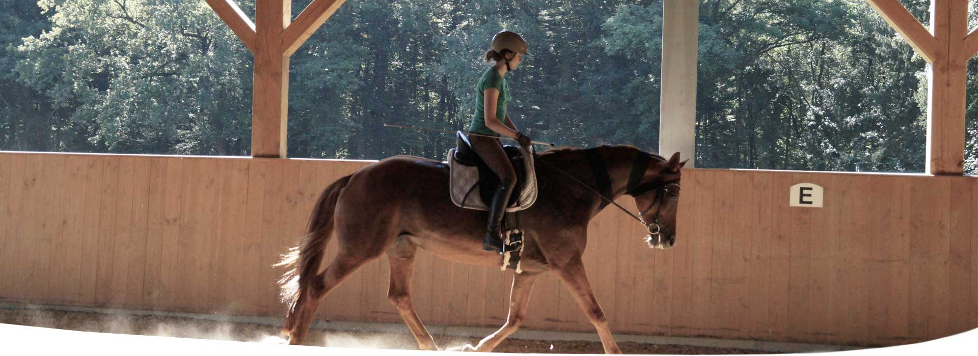 connected-riding-trainer-deutschland-reiten